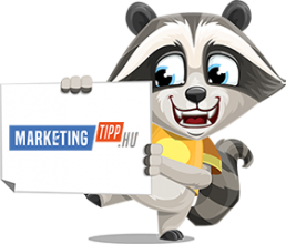 marketingtipp-raccoon